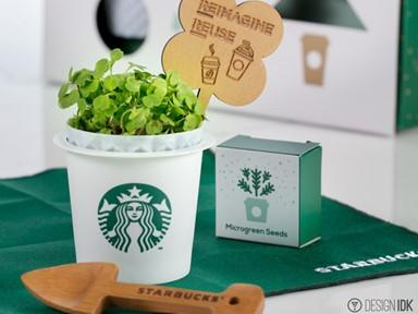 Starbucks之在家中輕鬆種出迷你菜